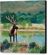 Royal Velvet Canvas Print by Mary Benke