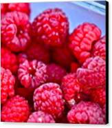 Ruby Raspberries Canvas Print