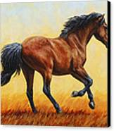 Running Horse - Evening Fire Canvas Print by Crista Forest