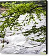 Rushing River Canvas Print by Thomas R Fletcher
