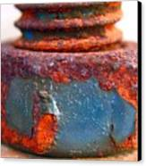 Rusty Screw And Bolt Canvas Print