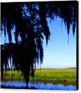 Sabine National Wildlife Refuge Canvas Print