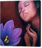 Saffron Canvas Print by Patricia  Dees