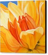 Saffron Splendour Canvas Print