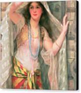 Safie Canvas Print by William Clark Wontner