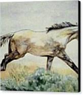 Sage Runner Canvas Print