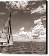 Sailboat Sailing On The Charleston Harbor Sepia Beneteau 40.7 Canvas Print by Dustin K Ryan