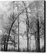 Salem Canvas Print