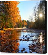 Salmon River Sanctuary Canvas Print by Skye Ryan-Evans