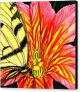 Salpliglossis Canvas Print