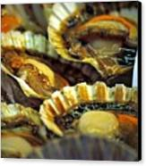 Scallops At Rialto Market In Venice Canvas Print