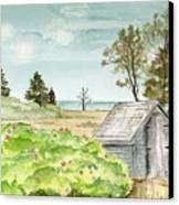 Scenic Maine   Canvas Print