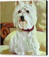 Schatzie Canvas Print