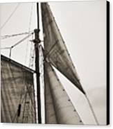 Schooner Pride Tall Ship Yankee Sail Charleston Sc Canvas Print