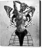Scream Of A Butterfly II Canvas Print by Jacky Gerritsen