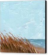 Sea Grass On Tybee Island Canvas Print