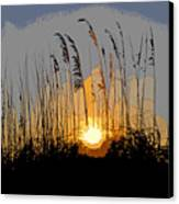 Sea Oats At Sunset Canvas Print by David Lee Thompson