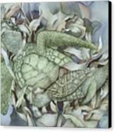 Sea Turtles Mum And Babe Canvas Print