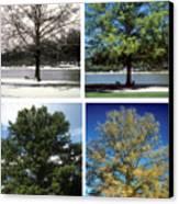Seasons Of Time Canvas Print