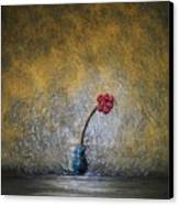 Seclude  Canvas Print by Edwin Alverio