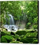 Secret Paradise - Hidden Appalachian Waterfall Canvas Print by Matt Tilghman