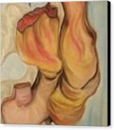 Sections Canvas Print by Michelle  Thomann-Ramirez