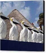 Sentry Pelicans Canvas Print