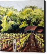Shed In A Vineyard Canvas Print by Sarah Lynch