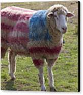 Sheep With American Flag Canvas Print by Garry Gay