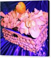Shell Box Canvas Print by Arlin Jules