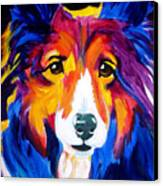 Sheltie - Missy Canvas Print by Alicia VanNoy Call