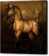 Shikoba Choctaw Horse Canvas Print by Shanina Conway