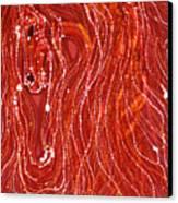 Shimmer Canvas Print by Carol  Law Conklin