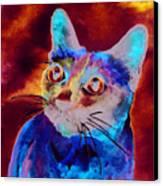 Siamese Cat Canvas Print by Christy  Freeman