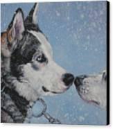 Siberian Huskies In Snow Canvas Print by Lee Ann Shepard