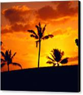 Silhouetted Golfer Canvas Print by Dana Edmunds - Printscapes