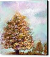 Simple Tree Canvas Print by Peter R Davidson