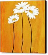 Simplicity L Canvas Print by Marsha Heiken