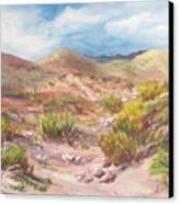 Simply The Desert Canvas Print by Jean Ann Curry Hess