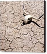 Skull In Desert 2 Canvas Print by Kelley King