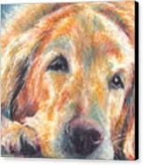 Sleepy Dog Canvas Print by Melissa J Szymanski