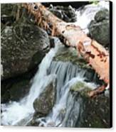 Small Beautiful Waterfalls Canvas Print by Tom Johnson