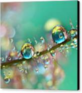 Smokey Rainbow Drops Canvas Print