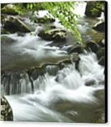 Smoky Mountain Rapids Canvas Print by Andrew Soundarajan