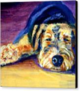Snooze Airedale Terrier Canvas Print by Lyn Cook