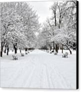 Snow Covered Benches And Trees In Washington Park Canvas Print