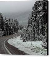 Snow On Road Through Forest Canvas Print by Linda Phelps
