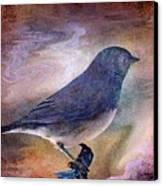 Snowbird Stories... Canvas Print