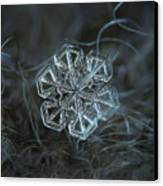 Snowflake Photo - Alcor Canvas Print by Alexey Kljatov