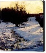 Snowmelt Canvas Print